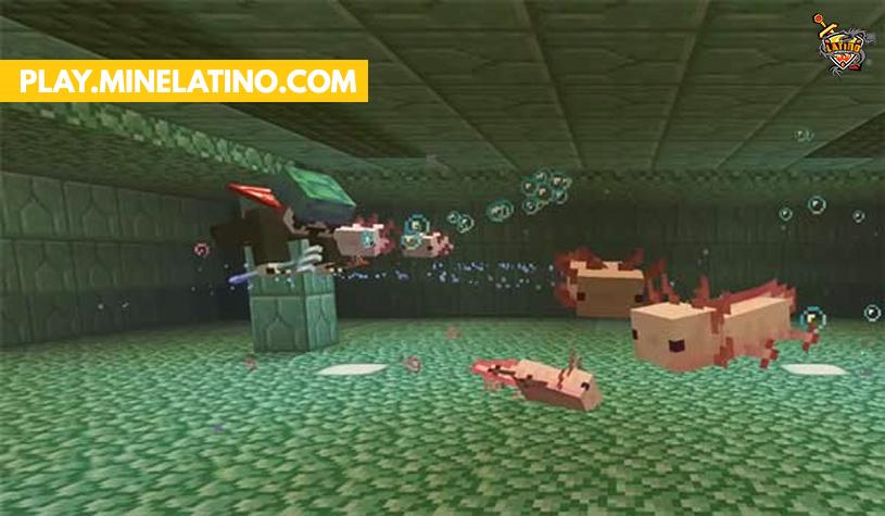 Ajolote nuevo mob minecraft 1.17
